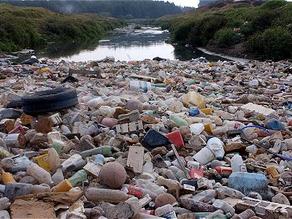 Las 5 NOTICIAS ambientales del año
