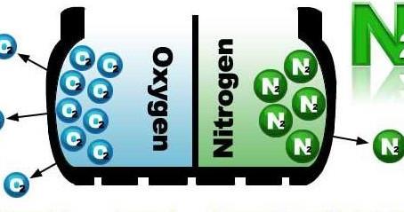 Beneficios del Nitrógeno en las Gomas