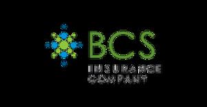 logo_BCS.png