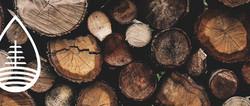 troncos.jpg