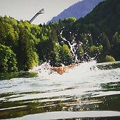 Freibergsee Delfinschwimmen.jpg
