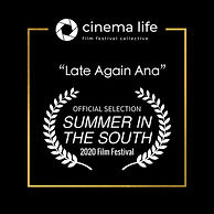 Official Selection Summer in the South L