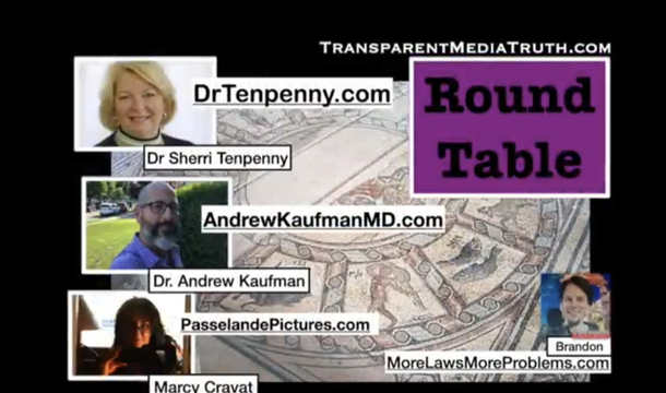 Round Table Expert Panel