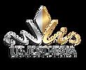 Logo--Lis--.png