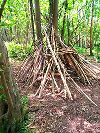 Forest School, den building, fun and learning