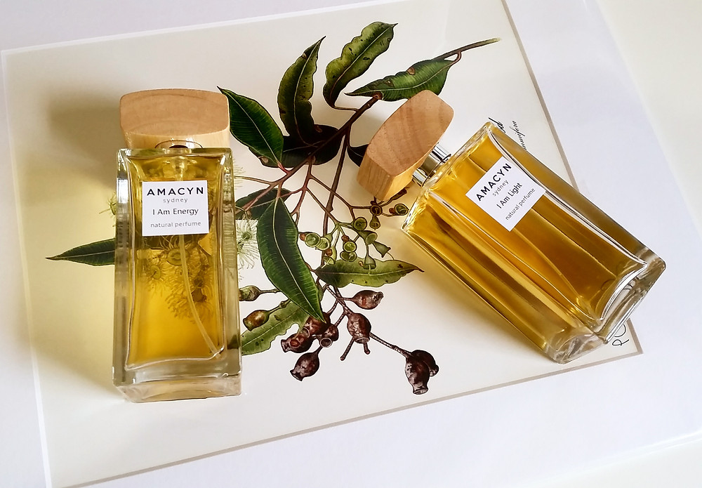 Eucalyptus Perfume