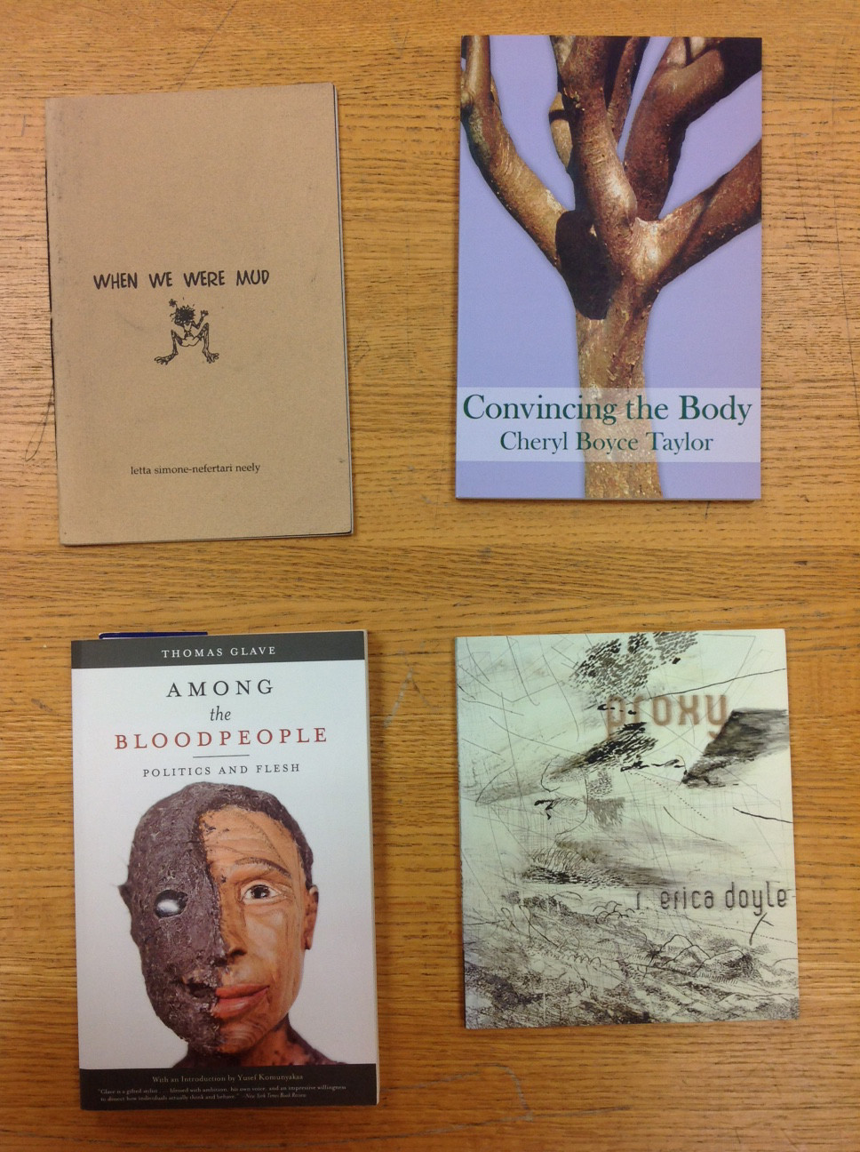 Sample of Black queer books, library of Lisa C. Moore
