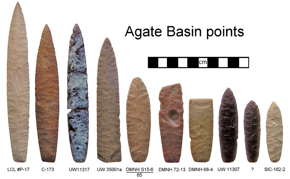 Agate Basin points.JPG