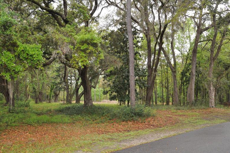 54 Gnarled Oaks Lane