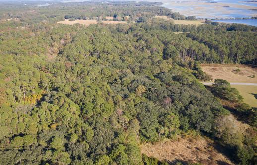 Briars Creek Lot 85-33.jpg