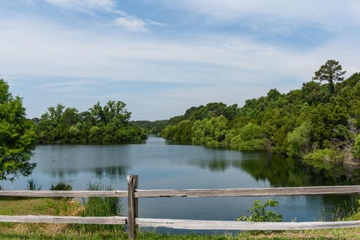 Briar's Creek