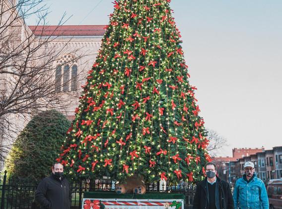 Board members and Tree