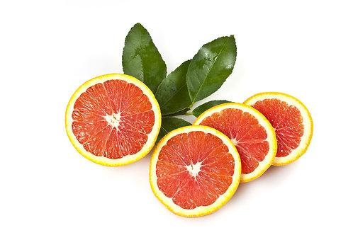 Blood Orange Tree Cara Cara (Already Fruiting)