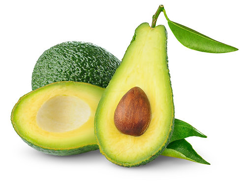 Avocado Tree (SHEPARD) B type pollinator