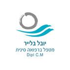 עיצוב לוגו   יובל בלייר