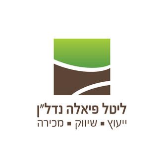 עיצוב לוגו | ליטל פיאלה