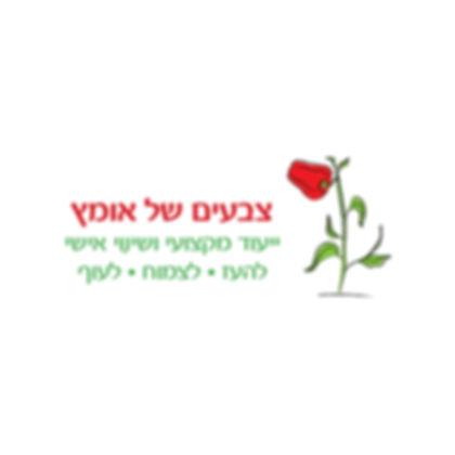 עיצוב לוגו לערכת קלפים