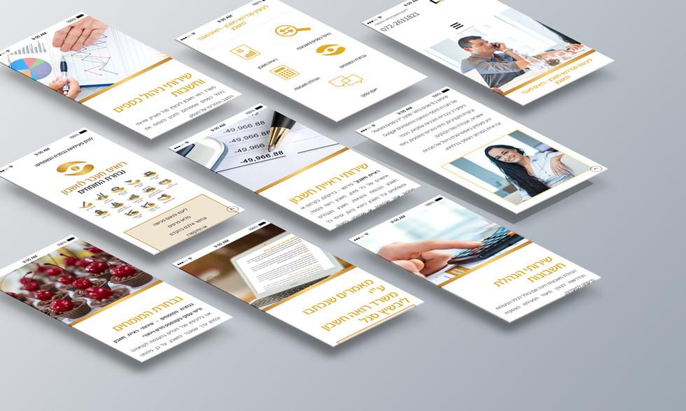עיצוב-אתר-ליבשיץ-סגל07