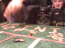 Roach Control Albuquerque