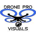 DRONEPROVISUALS logo.jpg