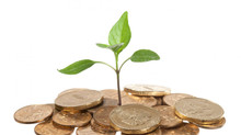 Monetizing Sustainability Investments for Business Decision-Making