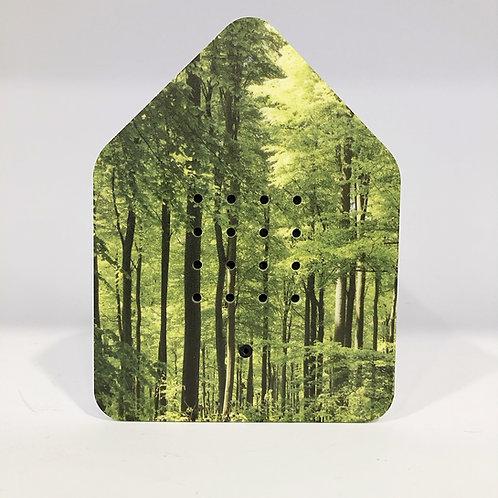 Zwitscher-Box Wald