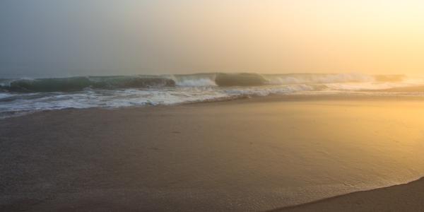 Papamoa Sea Fog