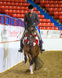 Canadian Reserve National Champion
