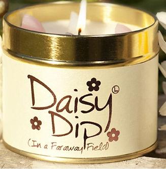 DaisyDip.jpg