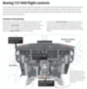 7 Boeing 737 Max Flight controls.png