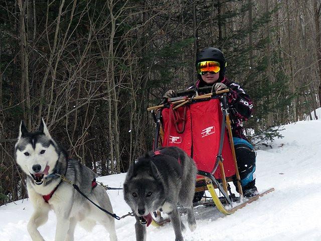 Mikayla M.'s 2 dog team