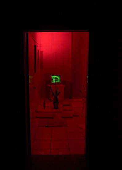 DREAMSOFSLEEP_red room_preview.jpeg
