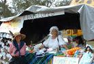 Mangrove Mountain Country Fair Stalls