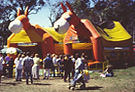 Mangrove Mountain Country Fair Jumping Castle