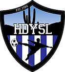 High Desert Youth Soccer League Logo