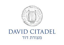 מצודת דוד