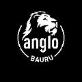 Logo_AngloBauru_Vestibulares_edited.png