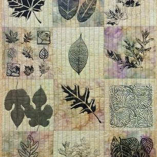 """Leaf Graphics"" by Susan Stein"
