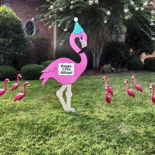 Flamingo Package
