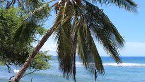 Maui High