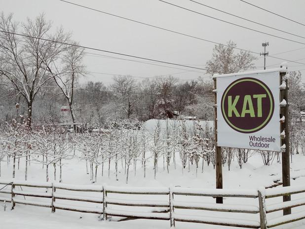 Kat winter2.jpg