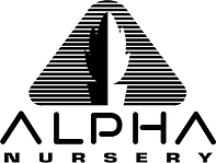 alpha logo.bmp
