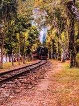 La Misión Brasil oferece programação especial de turismo