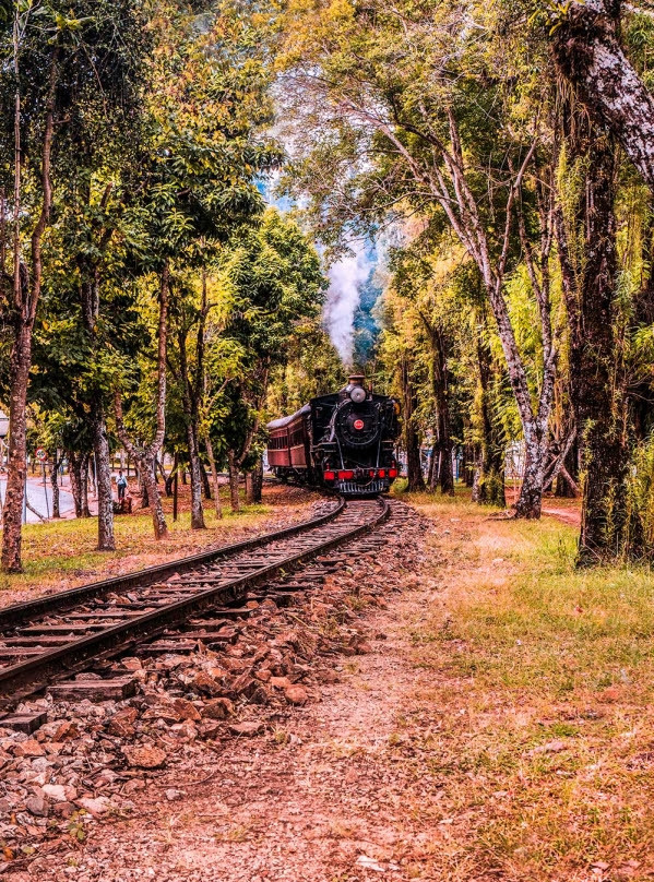 O Trem Da Serra da Mantiqueira passa por locais históricos da região. Foto: Paulo Fontes/ divulgação.