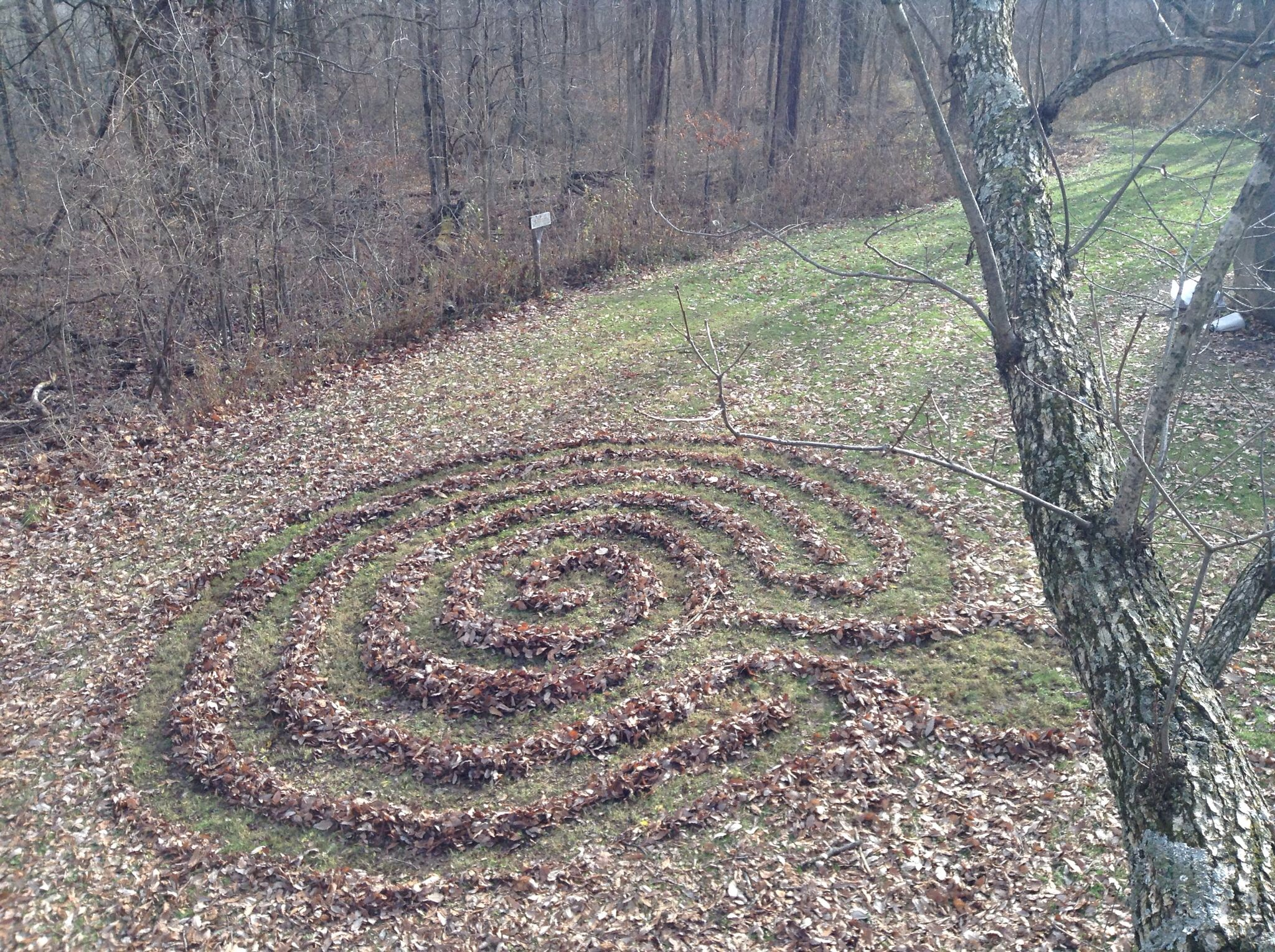Glen Helen Ohio Leaf Labyrinth