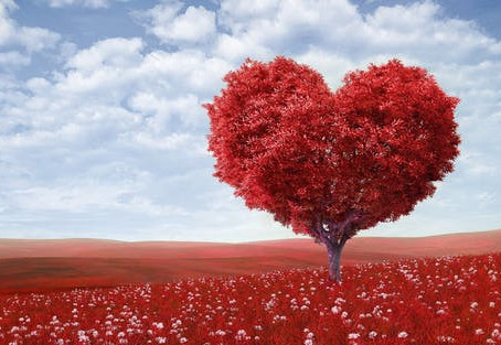 Change your love landscape this year