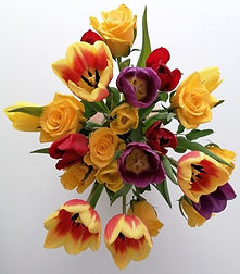 flower2_edited.jpg