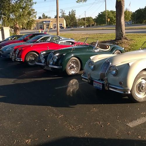 2017 Jaguar Club of SWF