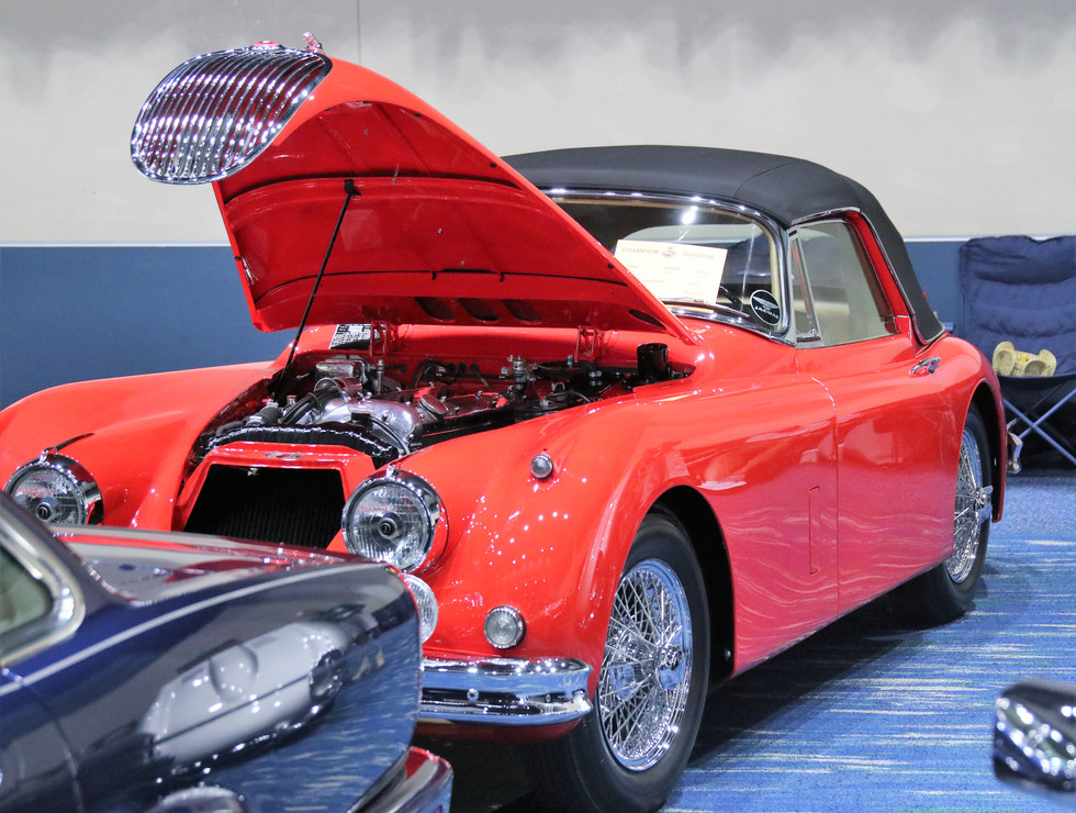 Jaguar of SW FL Car Show_2 (6)