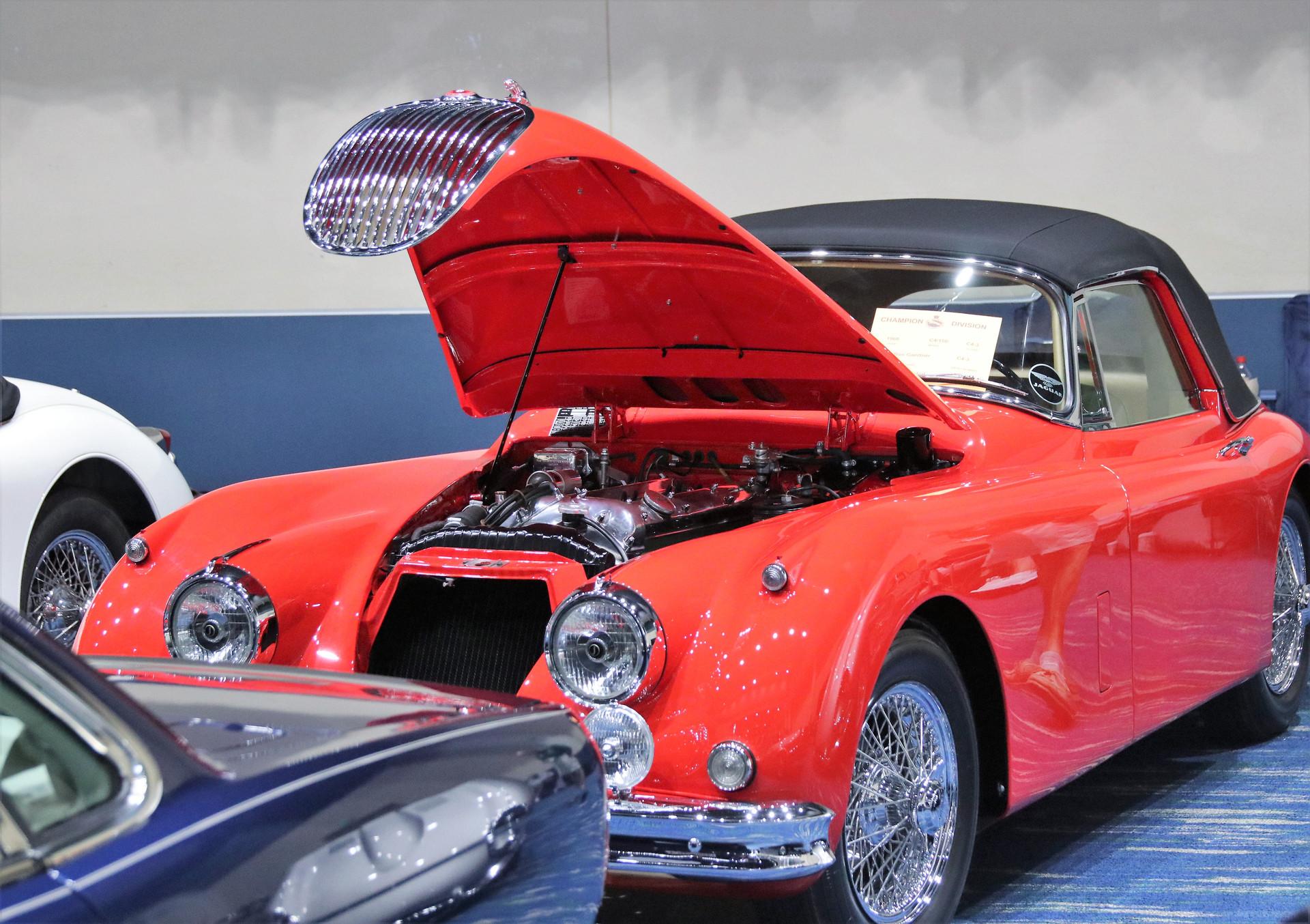 Jaguar of SW FL Car Show_2 (7)